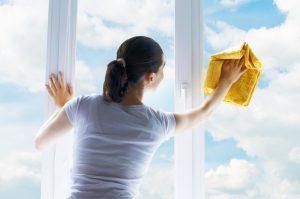 City wide window cleaning services