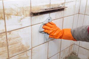 bathroom & lavatory cleaning services